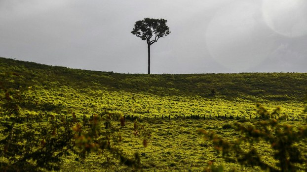 View of the landscape from the BR163 highway, in Brazil's Para state in the Amazon rain forest, Sept. 4, 2019.