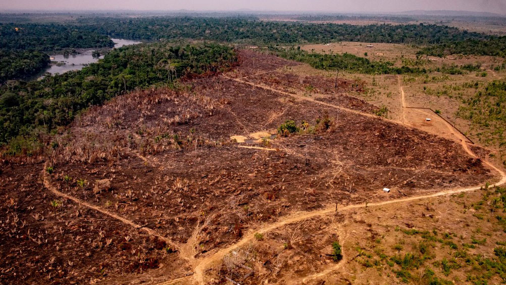 Handout picture released by Brazil's State of Mato Grosso showing deforestation in the Amazon