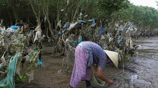 A Vietnamese woman gathers shells in a coastal forest littered with plastic waste stuck in branches after it was washed up by rising coastal tide in Thanh Hoa province, May 18, 2018.