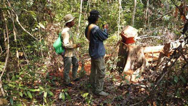 Activists with Lovers of the Environment document illegal logging in Cambodia's Prey Lang forest, April 22, 2020.