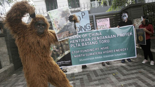 An activist in an orangutan costume takes part in a protest outside the Chinese consulate in Medan, Indonesia, against the construction of a dam that environmentalists fear will damage the habitat of an endangered orangutan species, March 1, 2019.