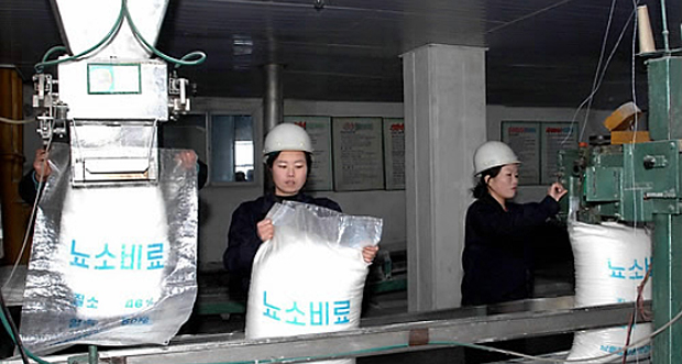 This file photo shows North Korean workers producing fertilizer at the Namhung Youth Chemical Complex in Anju, South Pyongan province, North Korea.