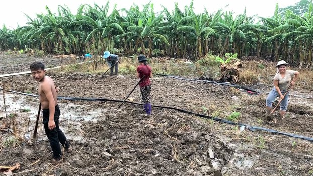 Laborers tilling land beside a Chinese-invested banana plantation in the Sing district of Luang Namtha province in Laos.
