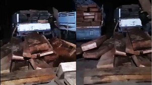 Processed timber in Laos is shown in these pictures taken by a citizen journalist in January 2020.