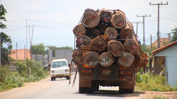 A truck hauls timber in Attapeu province, in 2015.