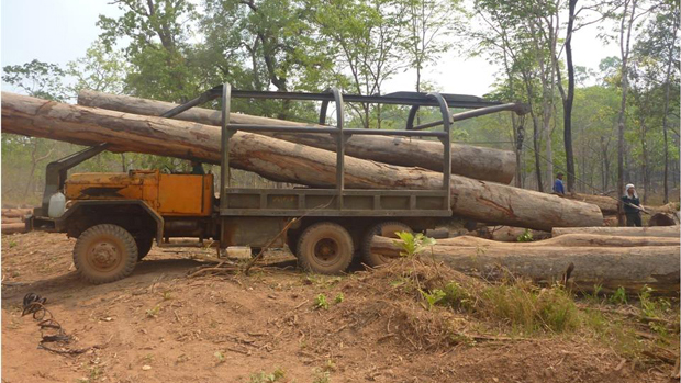 A Vietnamese truck loads timber from a forest in southern Laos in an undated photo.
