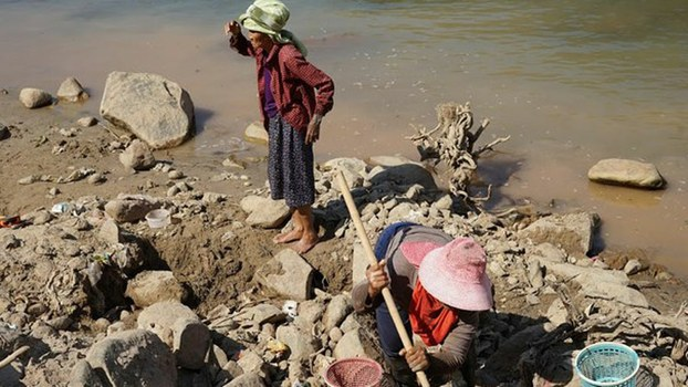 Villagers take advantage of lower water levels in the Mekong River to search for gold nuggets in northern Thailand's Chiang Khong district, Feb. 14, 2020.