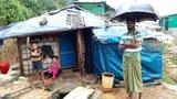 bangla-rohingya.jpg