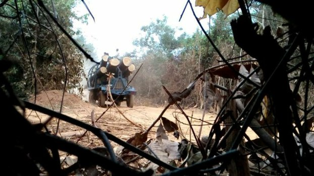 A camera trap image shows illegal loggers making a clandestine crossing to Vietnam from Cambodia's Virachey National Park, in February 2017.