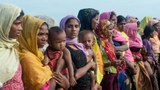 rohingya-rape.jpg