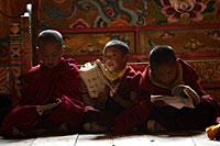 Monks200.jpg