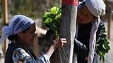 uyghur-women-cemetery-hotan-may-2019-160.jpg